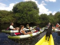 Kayak excursion from the river