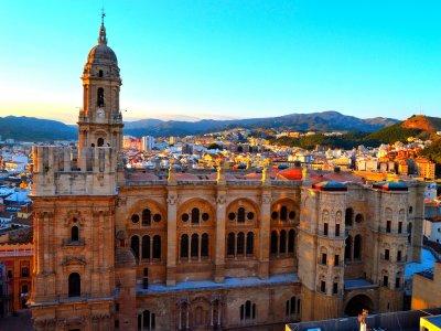 Visita guiada por Málaga sin entradas 4 hrs Adulto