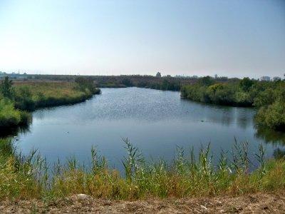 Ruta de senderismo a Desembocadura del Guadalhorce