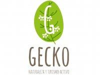 Gecko Turismo Activo Escalada