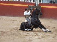 Espectaculo con caballos