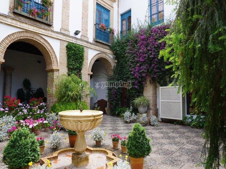 Paseo por Córdoba y sus patios