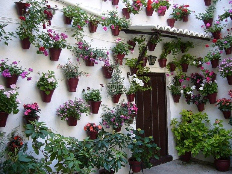 Disfrutando de las tradiciones de Córdoba