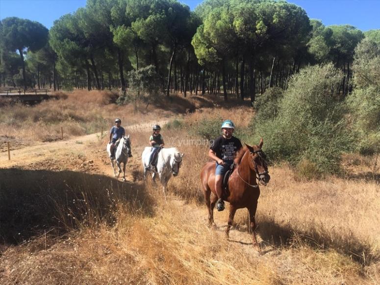 Atravesando senderos paseando a caballo