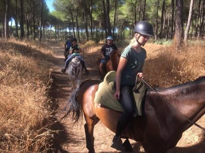 Ruta a caballo por El Aljarafe 4 horas Adultos
