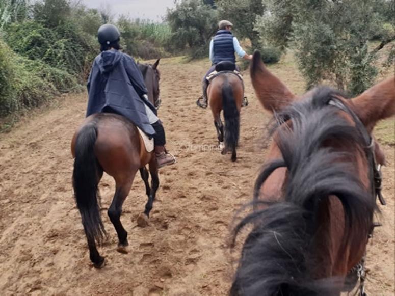Disfrutando de una ruta a caballo