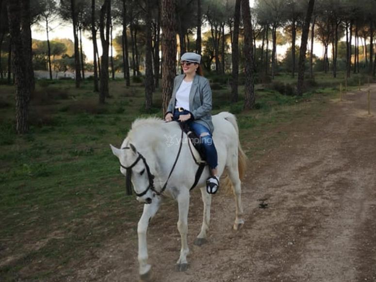 Salida a caballo por El Aljarfe