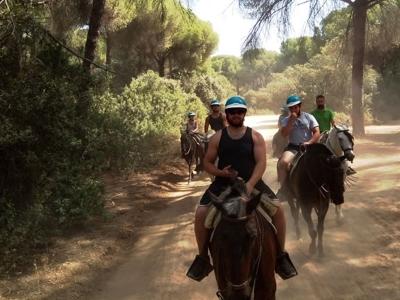Ruta a caballo por El Aljarafe 4 horas Niños