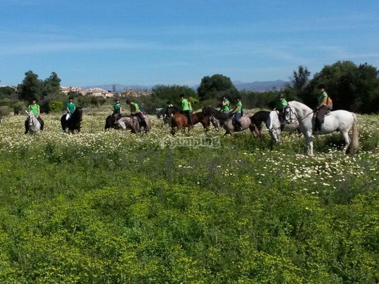 Horseback riding through Torremolinos