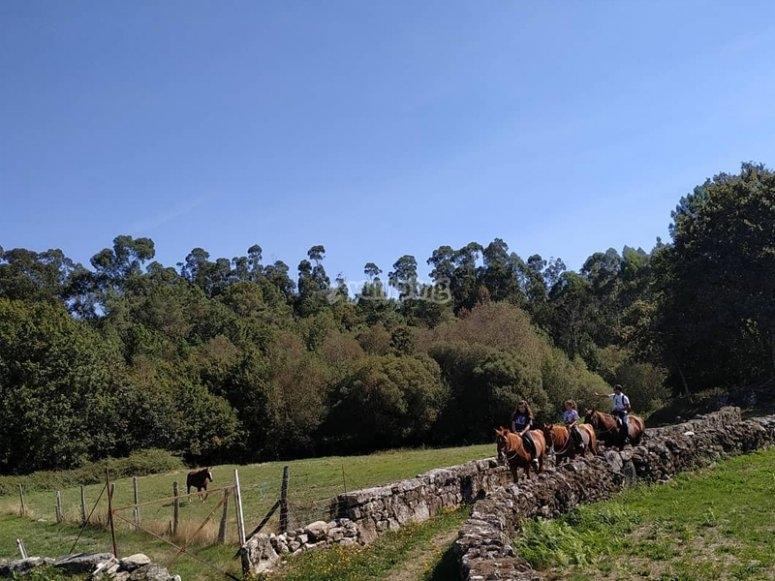Camino de Santiago a caballo desde O Cebreiro