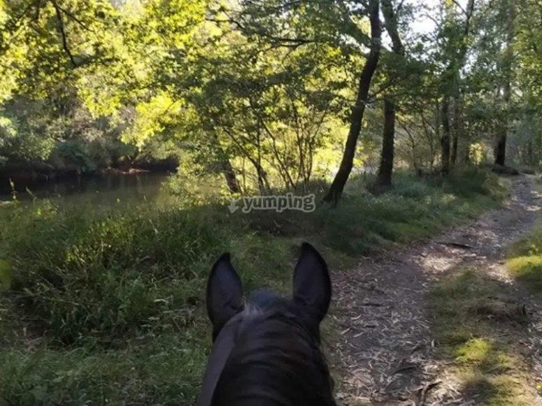 Pasando por río durante la travesía a caballo