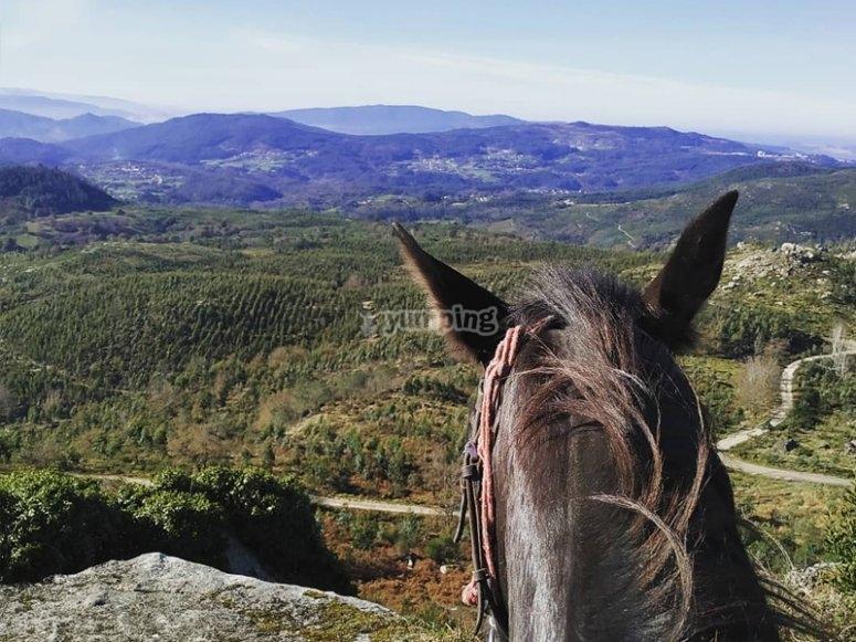 Disfrutando de las vistas a caballo
