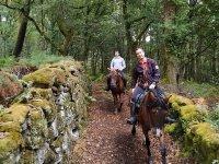Atravesando bosques con una excursión a caballo