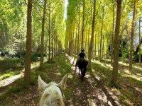Ruta a caballo por Sierra de Gredos en La Parra 2h