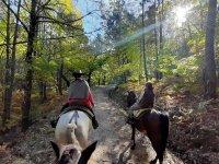 Ruta a caballo en Sierra de Gredos La Parra 1:30 h