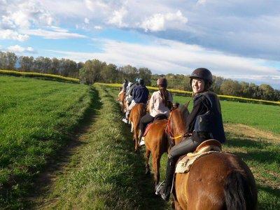 Ruta a caballo por montañas del Pla de l'Estany 3h