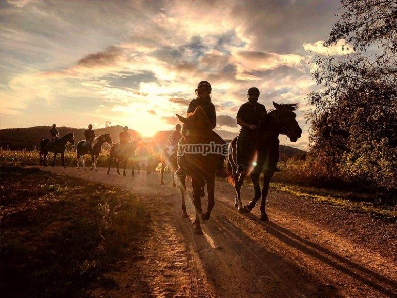 Conociendo los alrededores de Banyoles a caballo