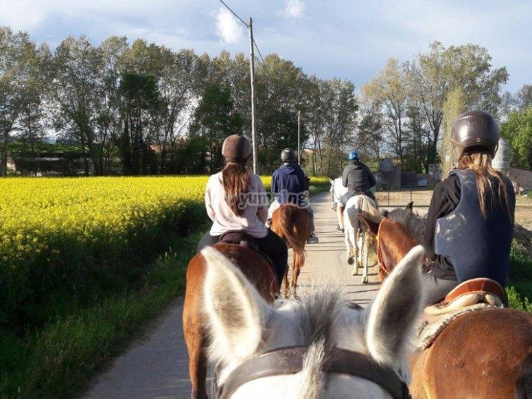 Descubriendo Banyoles a caballo
