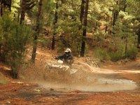 穿过泰德森林皇冠公园的四轮摩托车路线