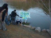 Barco y team building