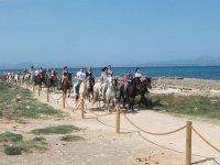 Horse riding route to Son Serra de Marina 2h