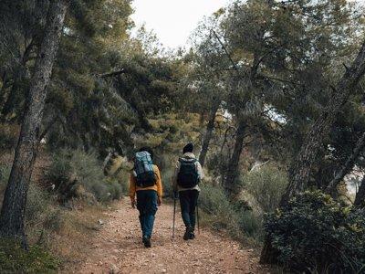徒步旅行到Dehesa de Boyal de Alpedrete 2小时