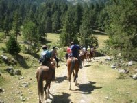 disfruta del mejor paseo a caballo