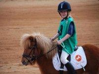 Los peques aprenden sobre ponis