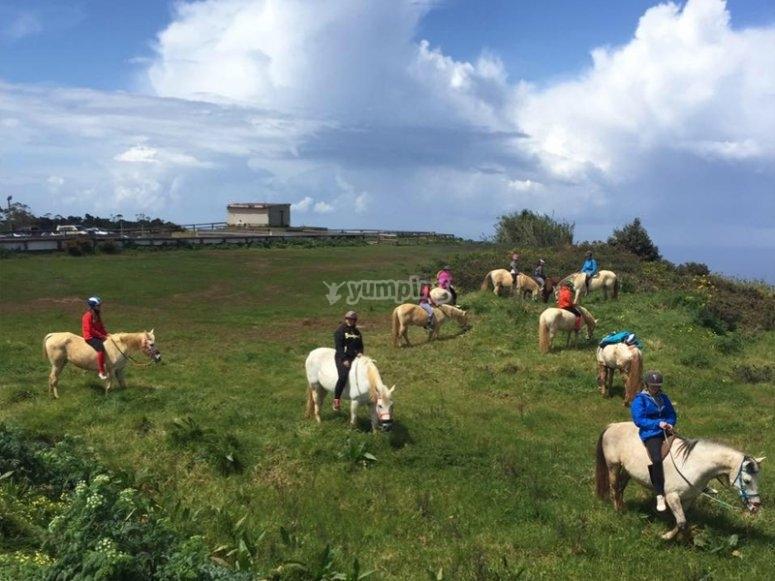 Horseback riding through La Laguna