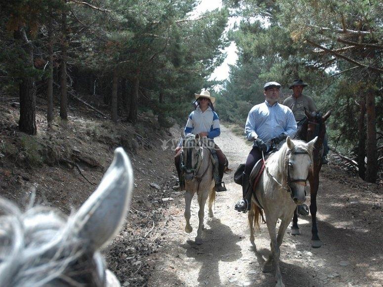 Enjoying an outing on horseback