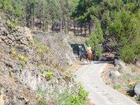 Leaving a forest on horseback through La Laguna