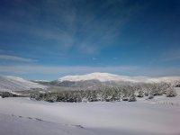el paisaje totalmente nevado