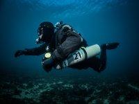 Diving dive