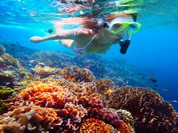 Family snorkeling route