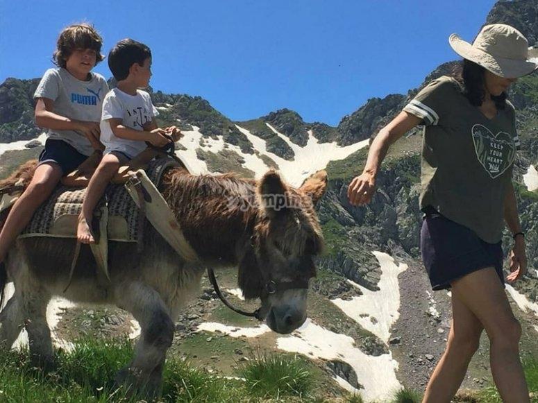 Enjoying a donkey ride