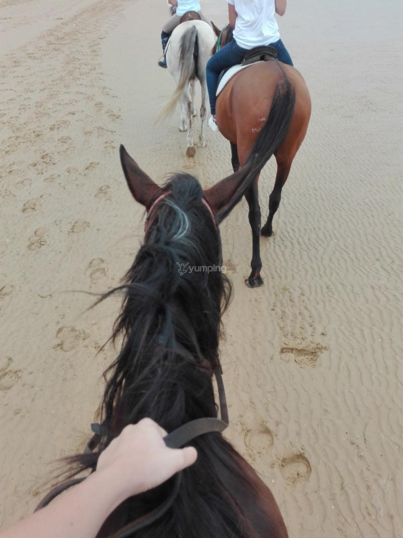 res_o-37014-rutas-a-caballo_de_cristina-perez_14993406073292.jpg