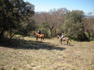 Caballos y Veredas Sierra Norte Despedidas de Soltero