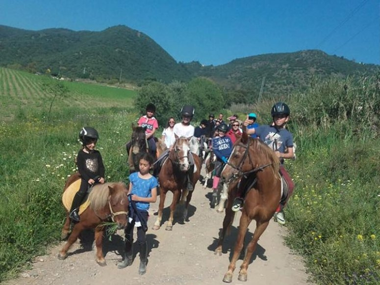 穿过科尔多瓦的骑马