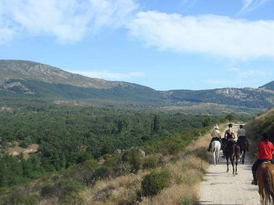 Salida a caballo al Parque del Patriarca 2h Media