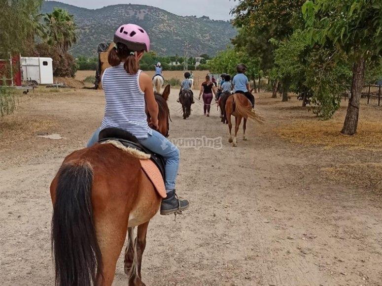 骑马课上的骑马