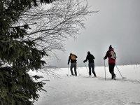 国家越野滑雪道滑雪高山滑雪旅游滑雪散步