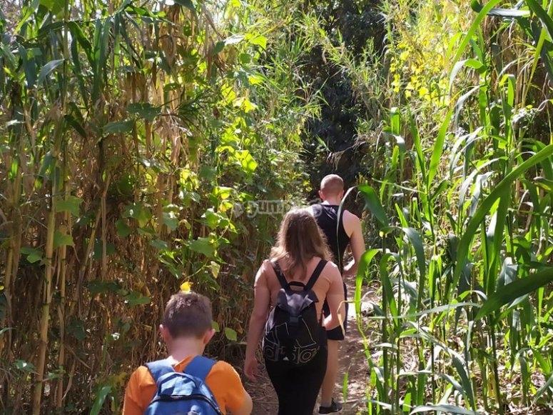 Paseo guiado al barranco de Cernícalos