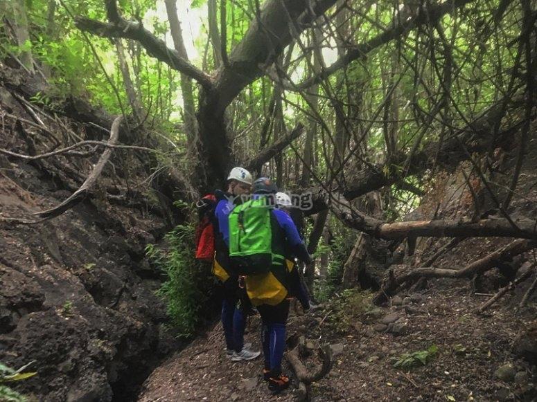 Descubriendo el barranco de Cernícalos