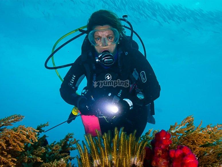 锡切斯PADI高级露天潜水员