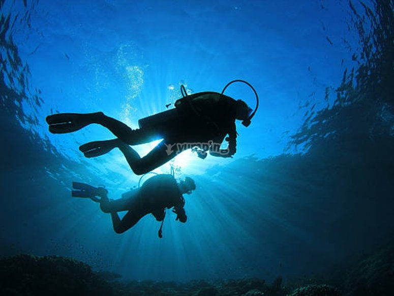 PADI潜水长资格在哥斯达黎加加拉夫