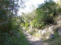 Caminando por la sierra de Irta