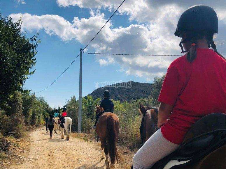 在骑马上发现滨海阿尔塔