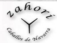 Zahori Caballos de Navarra Despedidas de Soltero