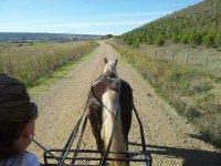 ruta en el caballo y el carro