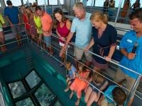 在阿吉拉斯-999的玻璃底乘船游览-卡阿特罗卡拉斯的景色